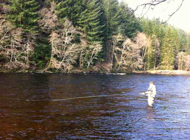 Enjoy Some High Quality 'River Therapy' On A Scottish Salmon River